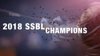 2018 IVL 9U Baseball: SSBL Division Champions