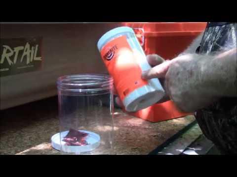 Beaver Control Series   Restoring Water Flow