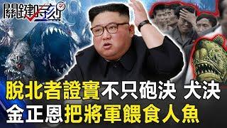 脫北者證實北韓不只砲決、犬決 金正恩新招把將軍活生生餵食人魚! 關鍵時刻20190625-3 馬西屏