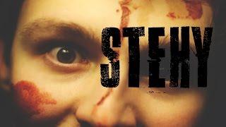 Stitches - Shawn Mendes ČESKY - Vít Soural (Stehy)