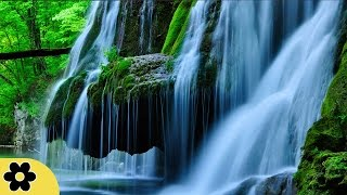 Music for studying, relaxing music, music for stress relief, focus music, background music, ✿2651c