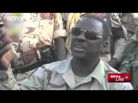 War on Boko Haram: Chadian Forces Kill 'Over 200' Boko Haram Militants