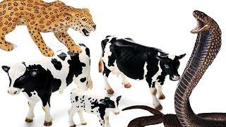 Животные. Приключения Животных. Видео для детей - Игрушки Животные. ДИНОЗАВРЫ. Игрушки ТВ