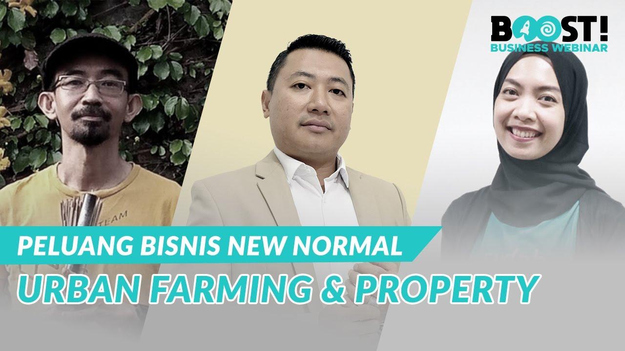 Peluang Bisnis Urban Farming & Properti di Bali - YouTube