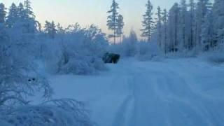 Rosyjski patent na zimę - Łada na gąsienicach! - NIEPOPRAWNI.org