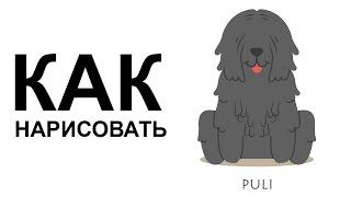 Картинки собака. КАК быстро НАРИСОВАТЬ СОБАКУ карандашом(Как нарисовать собаку поэтапно карандашом для начинающих за короткий промежуток времени. http://youtu.be/evQp_4rYLPc..., 2015-06-25T07:56:19.000Z)