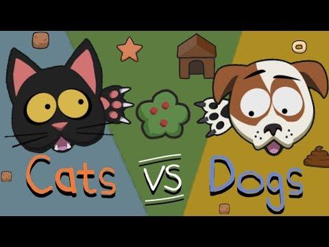 КОШКИ ПРОТИВ СОБАК! CatsVsDogs.io