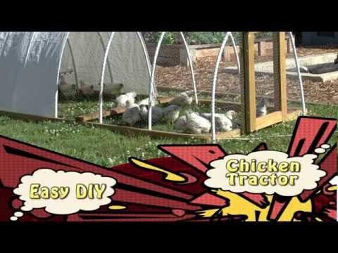 Easy DIY Chicken Tractors