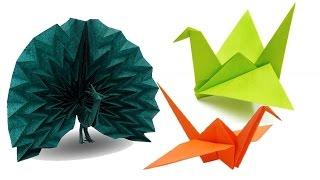 طريقة عمل 3 طيور مختلفة من الورق | فن طى الورق الاوريجامى والالعاب الورقية screenshot 3