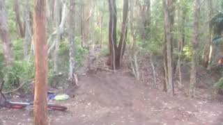 Guy Flies Off Bike Seat and Crashes on Forest Trail - 1078150