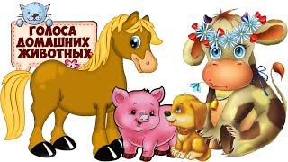 Голоса домашних животных. Домашние животные для детей.