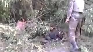 +18 Разбитая колонна чеченских боевиков под Мариуполем 06 09 14