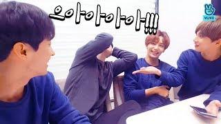 [V LIVE] SEVENTEEN - 🐰🐰🐰야생의 구오즈 토깽이들이 나타났다!!!(조건: 깡총출연) (SEVENTEEN 95s' V)