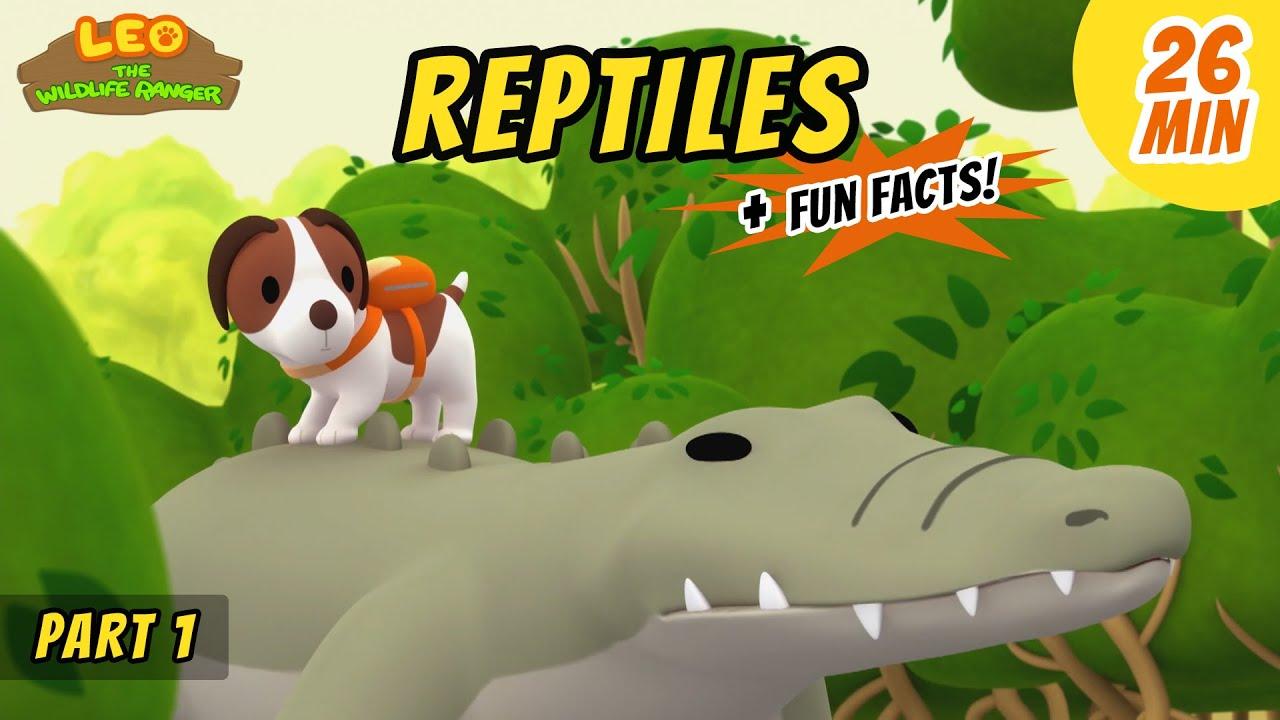 Reptiles (Part 1/2) - Estuarine Crocodile and more animal stories!