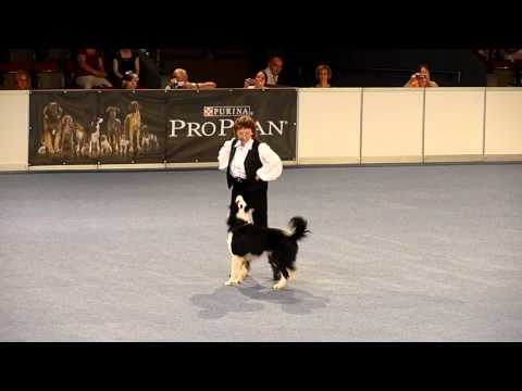 Galina & Moja Nadezhda Rolly Royce - World Championship in Dogdancing, Austria 2012