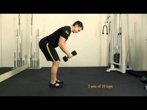 Bent Over Dumbbell Reverse Fly