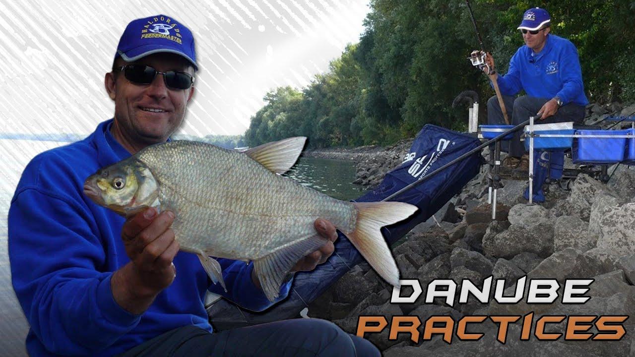 horgászni fülbemászó címsor a társkereső oldalra