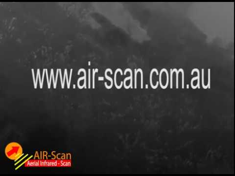 Drone  Infrared Thermal Imaging Flying Foxes