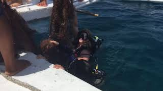 Ghost net pulled up by scuba girls