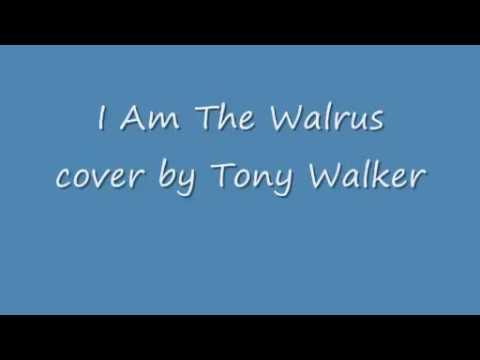 The Beatles I am the Walrus acoustic cover with lyrics - YouTubeI'm The Walrus Lyrics