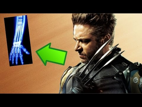 Thumbnail: 5 FATOS BIZARROS SOBRE AS GARRAS DO WOLVERINE (LOGAN)