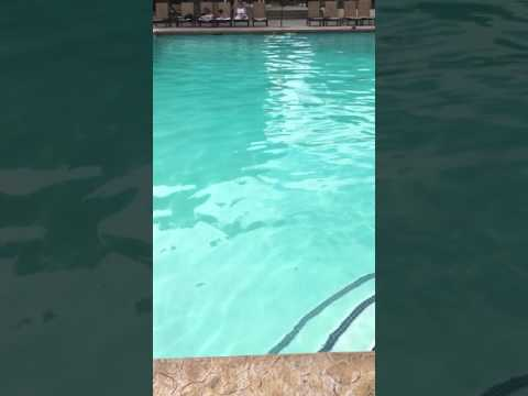 Long-distance underwater swim by 7-year-old