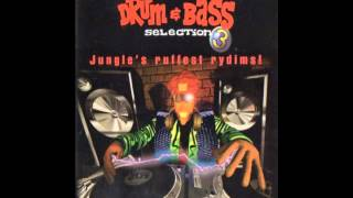 Drum & Bass Selection 3: Jungle