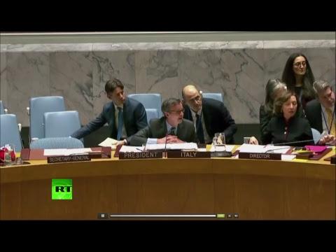 Заседание Совбеза ООН по новой резолюции США о мандате ОЗХО в Сирии