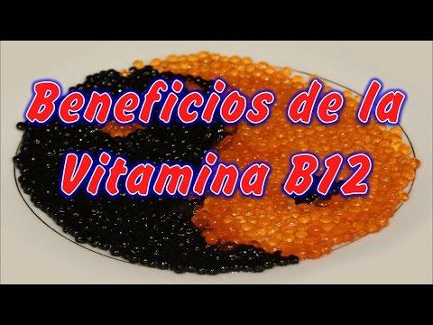 Vitamina B12 para que sirve y Beneficios, que Alimentos contienen vitamina B12