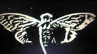 New Cicada 3301 Deep Web Website