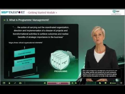 What is Programme Management?