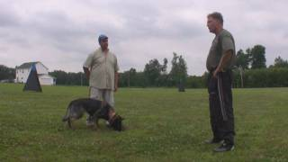 Etta :: Bernhard Flinks Schutzhund Seminar :: Obedience Training