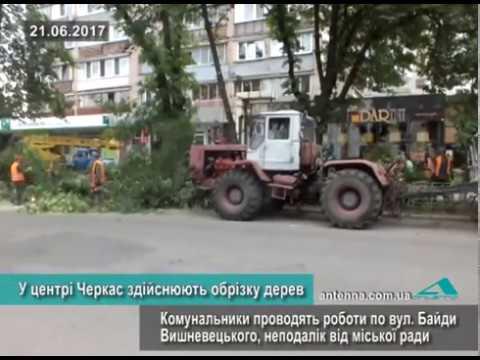 Телеканал АНТЕНА: У центрі Черкас здійснюють обрізку дерев