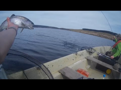 Llyn Brenig Fishing April 2015