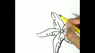 How to draw a Starfish   easy steps for children, kids, beginners