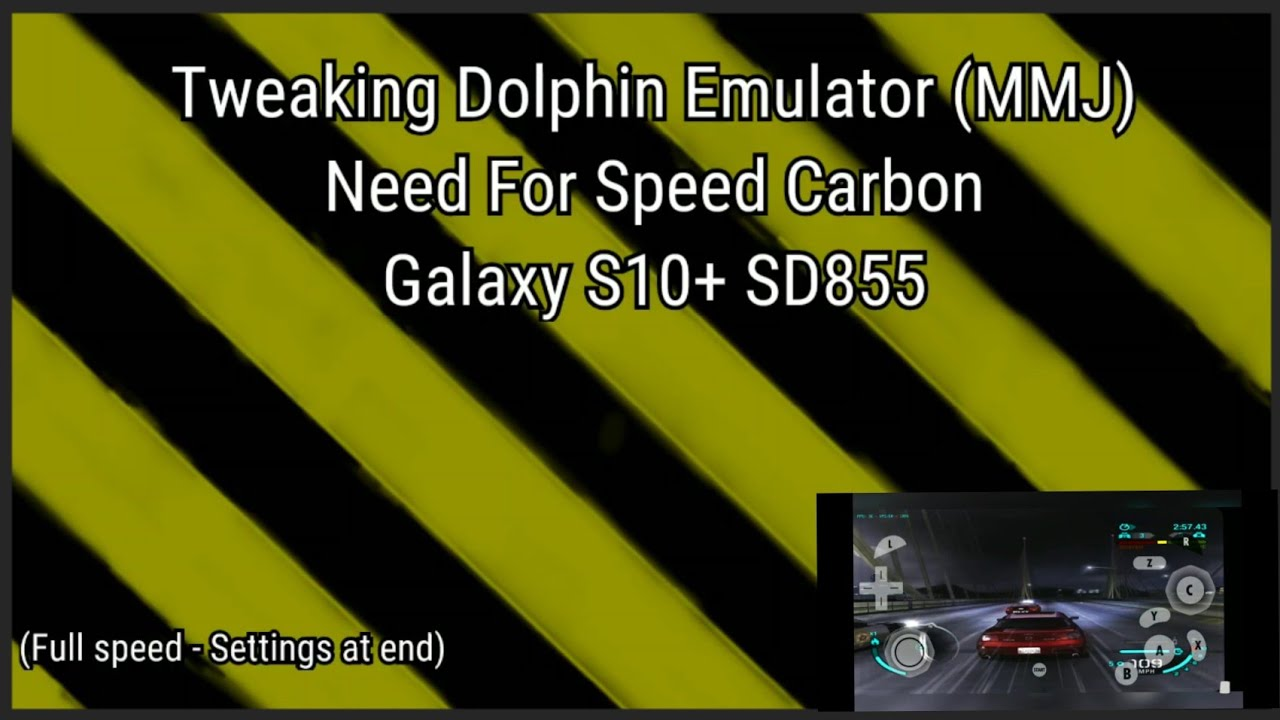 Dolphin mmj