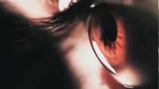Web-сериал [СПАМЫ] - Первый официальный тизер 2012