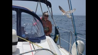 Sailing to Lesbos - Dolphins tag along & we explore a Petrified forest  S04E04