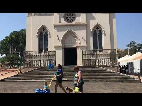 Ariranha São Paulo fonte: i.ytimg.com