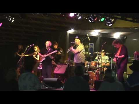 Stackridge - Slark - Rhythm Festival, 30th August 2008