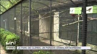 ANIMAUX : Le parc de Clères, un paradis animalier Normand