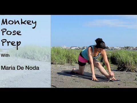 Monkey Pose Prep Yoga for Beginners