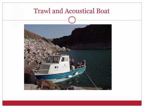 Pros Cons Acoustical and Trawl Tow Monitoring of Open Water Forage Fishes Lake Powell