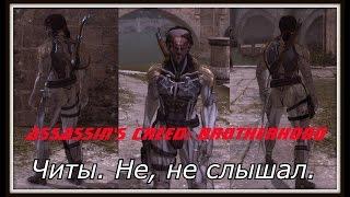 глюк в Assassins Creed - Brotherhood