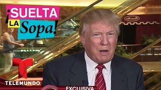 Suelta La Sopa Reacciones de varios artistas sobre Donald