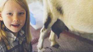 How to Milk a Goat - Taught by an 8 year old kid!