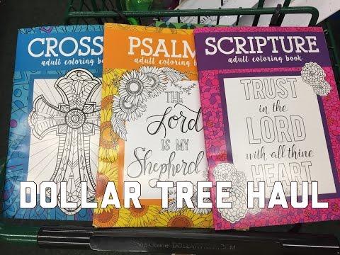 Dollar Tree Haul - August 20th, 2016 - Grand Opening