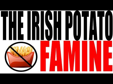 The Irish Potato Famine Explained: World History Review
