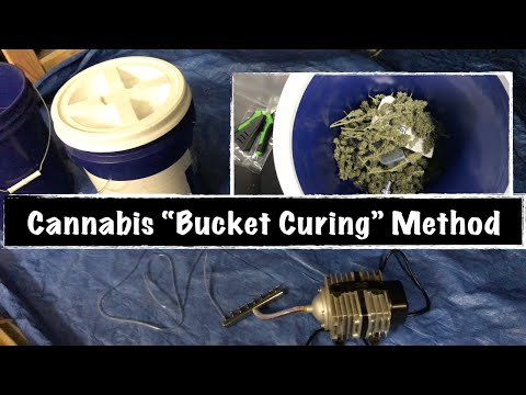 """Cannabis """"BUCKET"""" Curing Method/ Fully Automated Curing for Hemp Flower"""