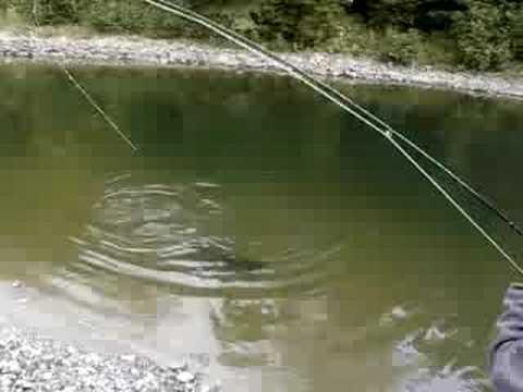 King Salmon Garden River Streamer Fishing